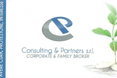 consulting e partners